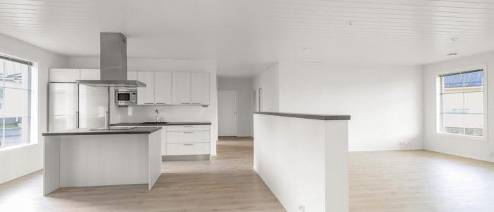 Moderni valkoinen keittiö ja avara olohuonetila